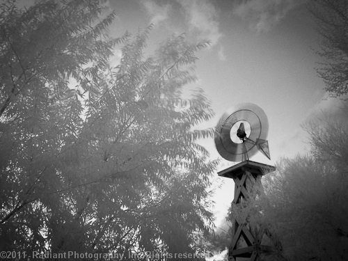 Springs Preserve IR Water Tower