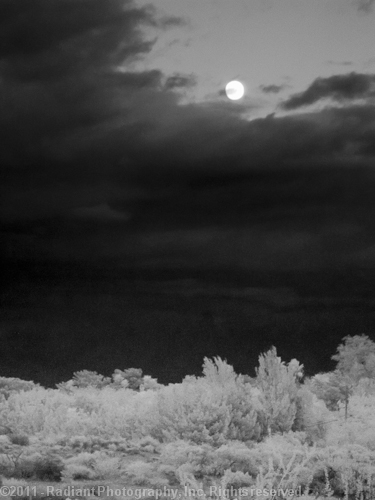 IR Moonrise over Springs Preserve